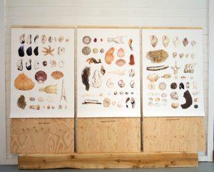 Aux embouchures, exposition, 2019. ©Mélissa Longpré